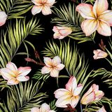 Exotic plumeria flowers and green palm leaves on black background. Seamless tropical pattern. Watercolor painting. Hand painted floral illustration. Fabric vector illustration