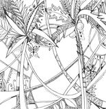 Exotic rain forest. Black and white hand drawn stylized picture Royalty Free Stock Photography