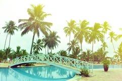 Exotic resort in Zanzibar. A neat well maintained resort, five star hotel village, in Zanzibar, Tanzania, in January, near the swimming pool area, with tall palm Stock Photos