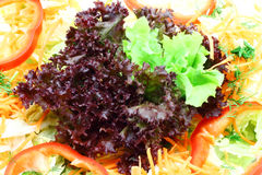Exotic salad close-up Royalty Free Stock Photography