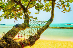 Exotic sandy beach hammock,  ocean and golden sand Stock Images