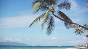Exotic sandy beach and palm tree on sea coast at sunny day with blue sky. Koh Samui, Thailand. Tropical island vacation. Tropical island vacation idyllic stock video
