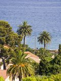 Exotic scenery. Typical view of the city of Cannes, French Riviera, Cote d'azure Royalty Free Stock Images