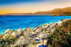 Exotic scenery - sunbathing Royalty Free Stock Photo