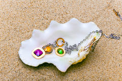 The exotic sea shell with  beads Stock Image
