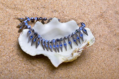 The exotic sea shell with beads lies on sand Stock Photography