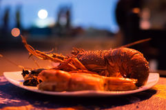 Exotic seafood in the restaurant Royalty Free Stock Image