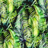 Exotic seamless pattern of watercolor tropical green leaves. Hand drawn on a dark background stock illustration