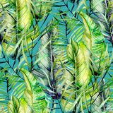Exotic seamless pattern of watercolor tropical green leaves. Hand drawn on a turquoise background royalty free stock images