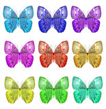 Exotic Set of Cambodian Junglequeen butterflies face profile in Stock Photos