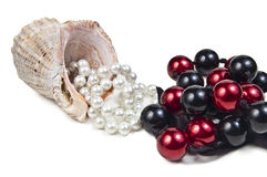 Exotic shell. Beautiful exotic shell and white pearls and necklace beads on white background Royalty Free Stock Photography