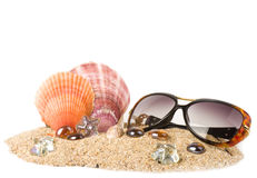 Exotic shell, crystals and glasses on sa Stock Image