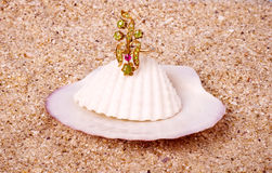 Exotic shell with golden ring Royalty Free Stock Photo