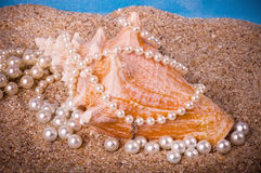 Exotic shell and pearls on sand Stock Photos