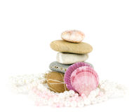 Exotic shell and stones, pearls Stock Photos