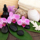 Exotic Spa Treatment Stock Photography