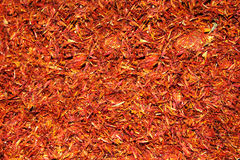 Exotic spice, saffron Royalty Free Stock Photo