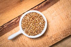 Exotic spices concept organic coriander seeds in white cup on wo Royalty Free Stock Photos
