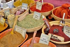 Exotic spices Stock Image