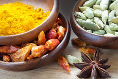 Exotic spices in wooden bowls, close up Royalty Free Stock Photo