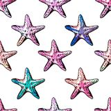Exotic  starfishes colorful seamless pattern. Watercolor imitation. Stock Photo