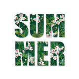 Exotic Summer Design. Tropical Orchid Flowers and Leaves Background. T-shirt Fashion Graphic. Stock Image