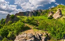 Exotic summer landscape Stock Photo