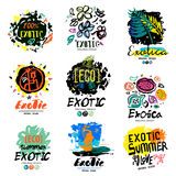 Exotic summer logo, illustration.  Exotic summer holiday sign, icon. Royalty Free Stock Images