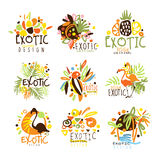 Exotic Summer Vacation Colorful Graphic Design Template Logo Series,Hand Drawn Vector Stencils Stock Photos