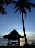 Exotic sunset stock photos