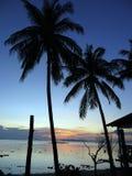 Exotic sunset Stock Photography