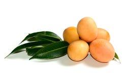 Exotic Thai Fruit, Marian plum Royalty Free Stock Images