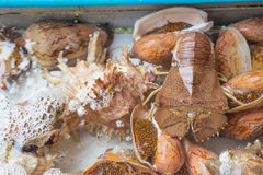 Exotic Thai seafood Stock Images