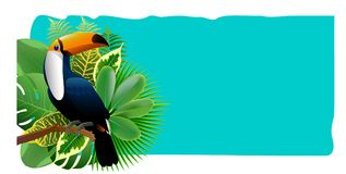 Exotic Toucan Bird, Colorful Hibiscus Flowers Blossom and Tropic. Al Leaves, on green Background. Vector illustration Royalty Free Stock Photos