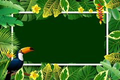 Exotic Toucan Bird, Colorful Hibiscus Flowers Blossom and Tropic. Al Leaves, on green Background. Vector illustration Royalty Free Stock Photography