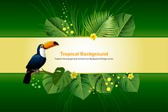 Exotic Toucan Bird, Colorful Hibiscus Flowers Blossom and Tropic. Al Leaves, on green Background. Vector illustration Royalty Free Stock Image
