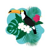Exotic Toucan Bird, Colorful Hibiscus Flowers Blossom and Tropical Leaves. On White Background. Vector illustration Stock Photo
