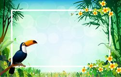 Exotic Toucan Bird, Colorful Hibiscus Flowers Blossom and Tropic. Al Leaves, on White Background. Vector illustration Royalty Free Stock Photography