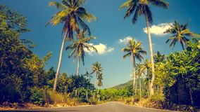 Exotic travel background stock video footage