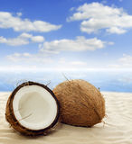 exotic travel coconut on beach Royalty Free Stock Photo