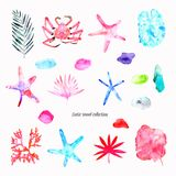 Exotic travel collection on the white background: a branch with leaves, a crab, tropical plants, starfishes, a coral reef, stones stock illustration