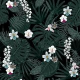 Exotic tropical  background with hawaiian plants and flowe. Rs. Seamless dark tropical pattern with monstera and sabal palm leaves, guzmania flowers Stock Photography