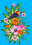 Exotic Tropical Background Royalty Free Stock Photo