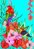Exotic Tropical Background Stock Images