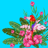 Exotic Tropical Background Royalty Free Stock Photos