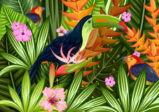 Exotic Tropical Background Royalty Free Stock Images