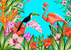 Exotic Tropical Background Stock Image