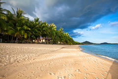 Exotic tropical beach. Stock Photography