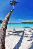 Exotic tropical beach. stock images