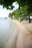 Exotic tropical beach Stock Photos